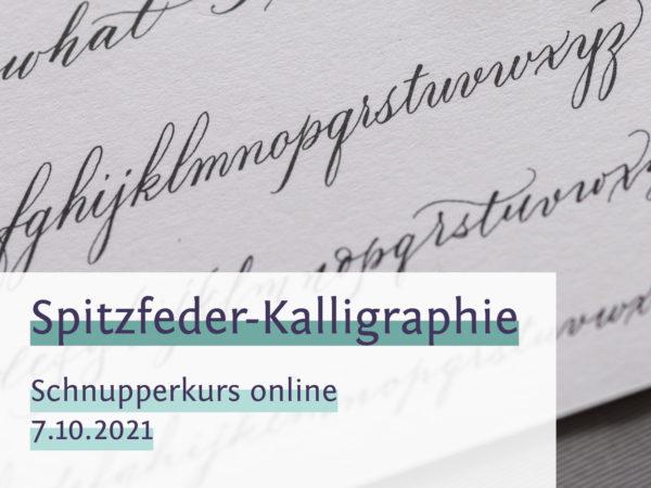 spitzfeder onlinekurs